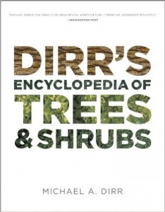 dirrs trees